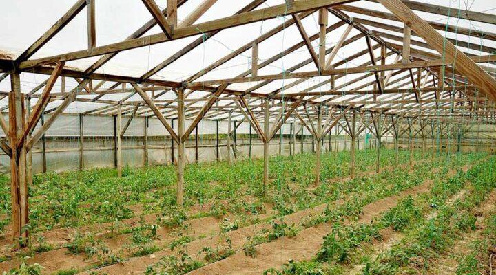 Αγροτεμάχιο προς πώληση, Κεντρί Ιεράπετρας floorplan 1